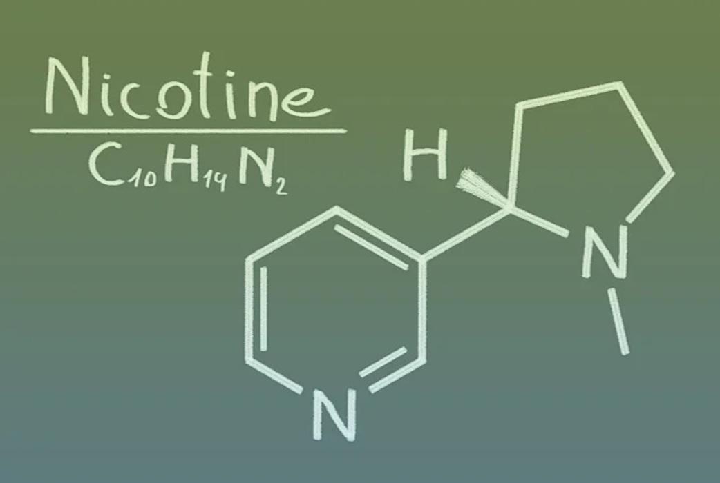 Was ist ein Nicotine Pouch?