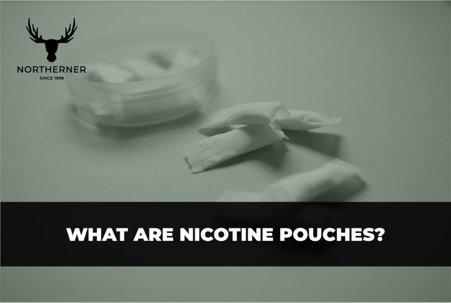 What Are Nicotine Pouches?